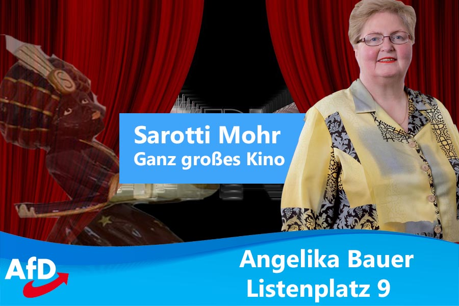 sarotti mohr mannheim